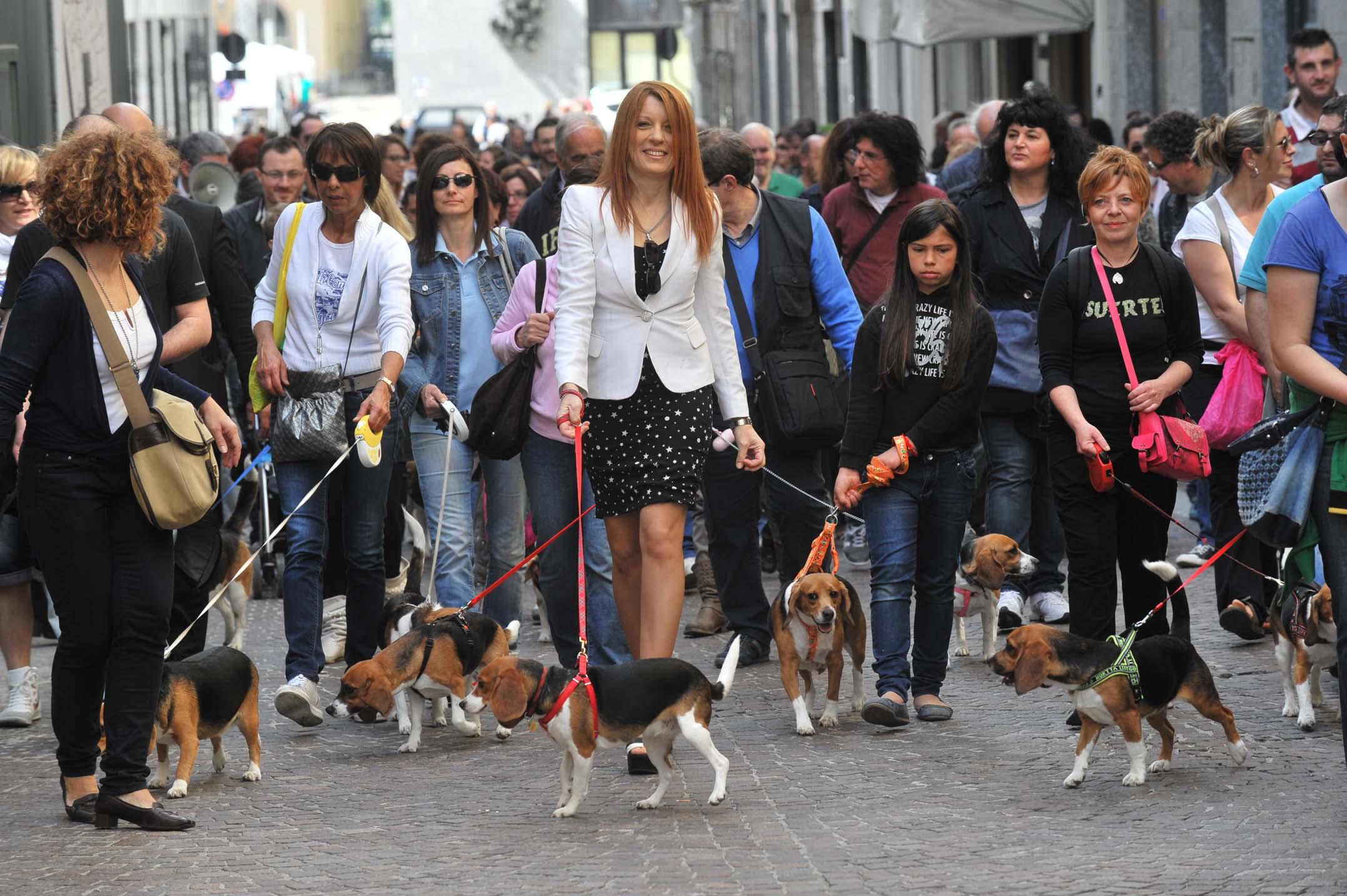 Michela Brambilla in una fase della campagna elettorale di Forza Italia