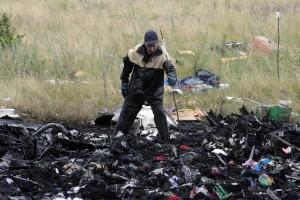 Resti del MH17 in un'area bruciata. Sullo sfondo la differenza con la vegetazione