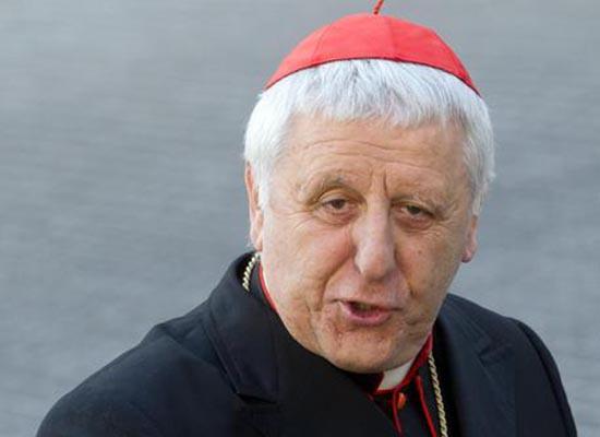 Il Cardinale Giuseppe Versaldi in una foto del 2013 (Ansa/Peri)
