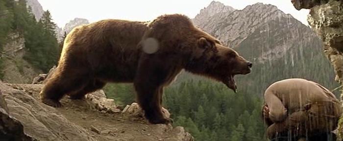 Un Orso aggressivo ha tentato di sbranare Wladimir Molinari