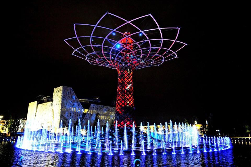 albero della vita foto expo 2015