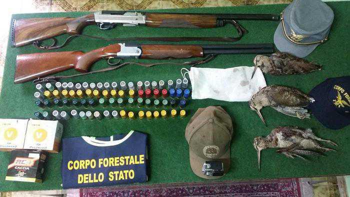 Plataci (Cosenza), arrestati e rilasciati 2 cacciatori per bracconaggio