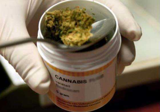 Francia, testano farmaco a base di cannabis. Un morto e 5 gravi