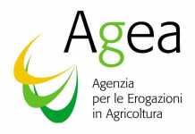 Truffa all Agea, l'Antifrode sequestra beni per 265mila euro