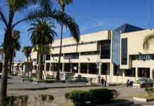 Procura di Palmi coordina inchiesta su truffe ad assicurazioni