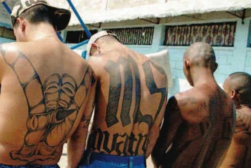 """Omicidio a Milano, arrestati sette membri della gang di """"latinos"""""""