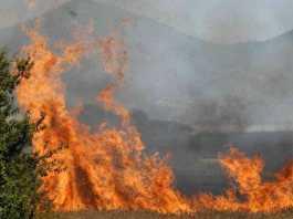 Castrovillari, pensionato brucia sterpaglie e muore soffocato dal fumo