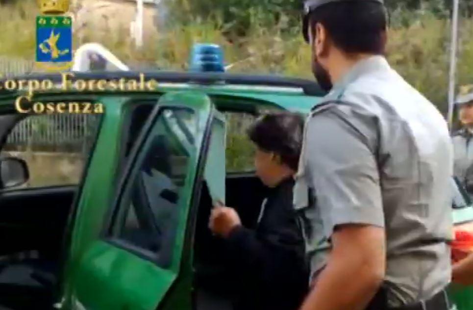 P.M. mentre viene portata da militari del Cfs agli arresti domiciliari a Cerceto