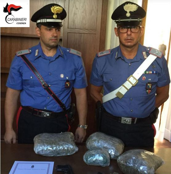 Trovato con 2 chili di marijuana a Cosenza. Arrestato Leonardo Sabino