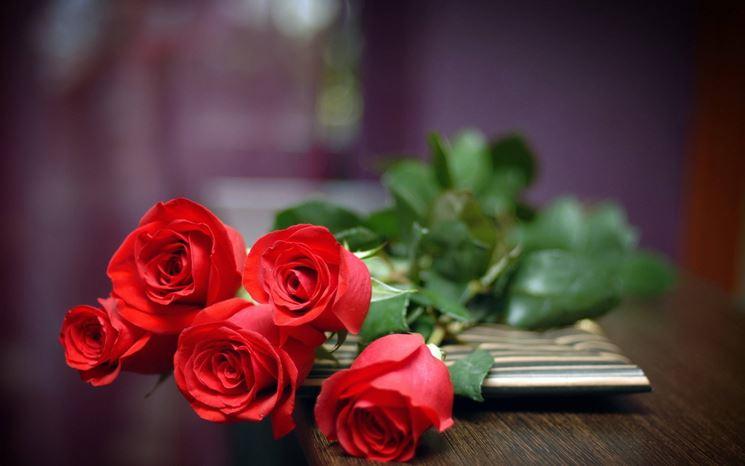 Regalare fiori, se non graditi, può essere stalking