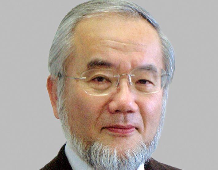Premio Nobel per la Medicina 2016 al giapponese Yoshinori Ohsumi