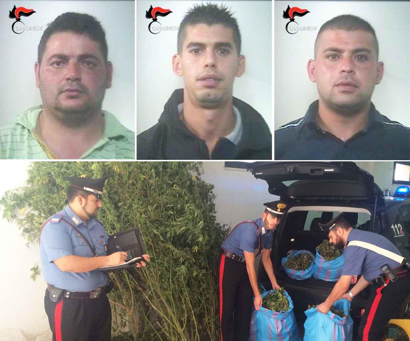 Francesco Violi, Mariano Delfino e Rocco Graziano Delfino. In basso i militari con la marijuana sequestrata a Bagnara Calabra