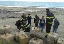 Esperti al lavoro sulla spiaggia di Calalonga a Montauro