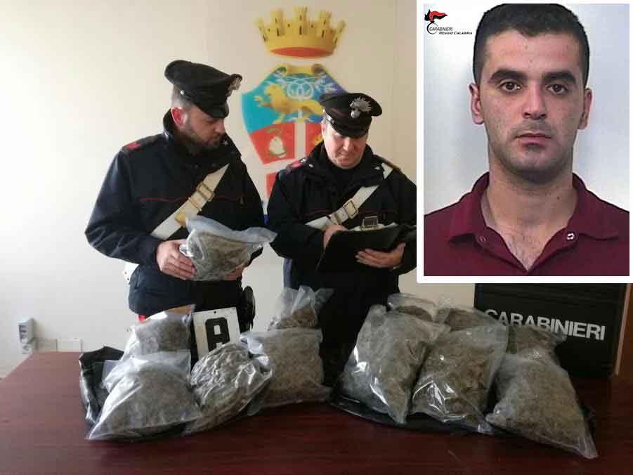La marijuana sequestrata. Nel riquadro Vincenzo Simonetta