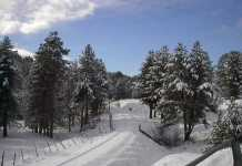 neve-in-calabria