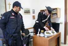 Attività antidroga dei Carabinieri di Crotone: 8 arresti