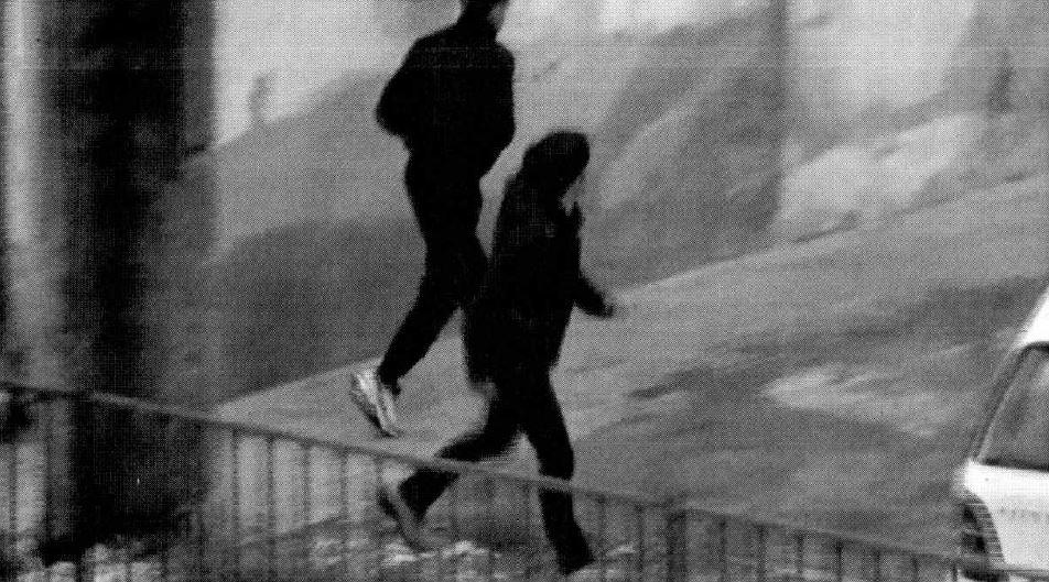 'Ndrangheta: smantellata cosca attiva nella piana di Lamezia: 47 arresti