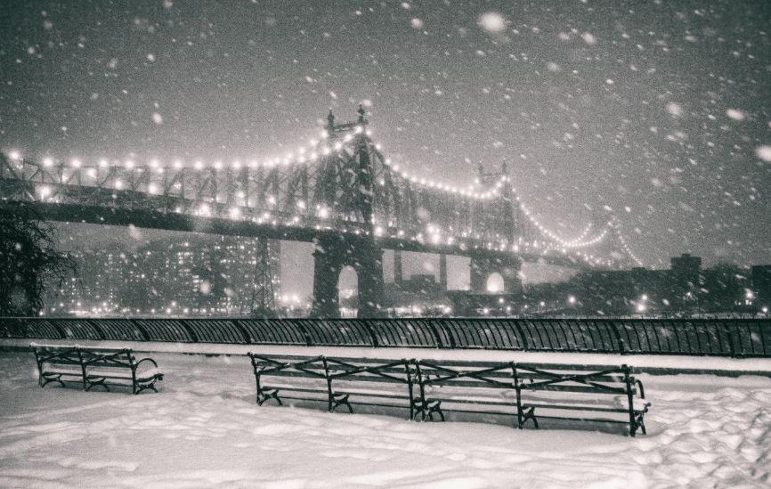 Neve America New York
