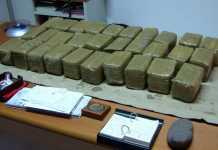 Panetti di droga cocaina