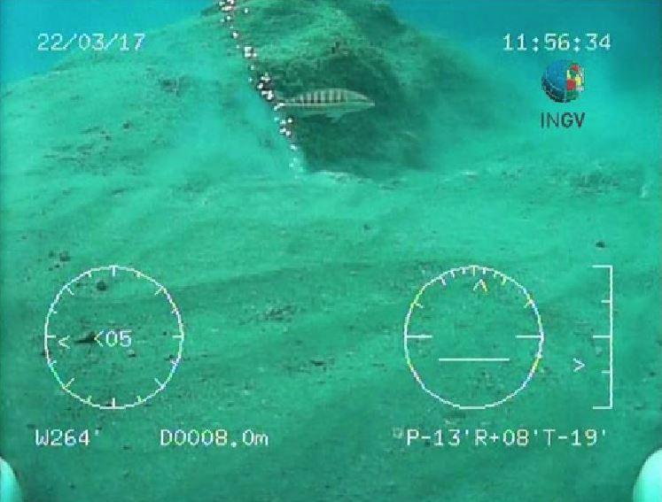 Le emissione di gas rilevate dagli scienziati isole di Montecristo
