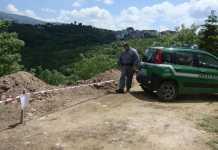 carabinieri forestale spezzano magli trenta