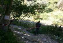 carabinieri forestali rossano
