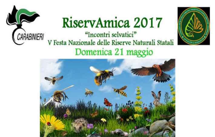 RiservAmica 2017