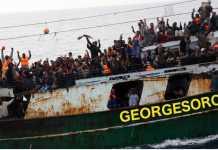 sbarchi migranti Ong