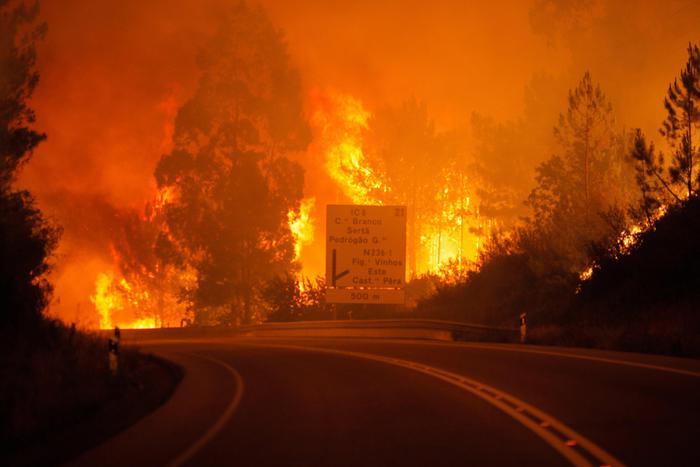 L'incendio nella foresta di Pedrogao Grande in Portogallo