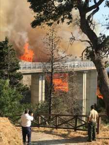 incendio al Parco della biodiversità