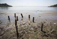 Siccità roma. Lago Bracciano