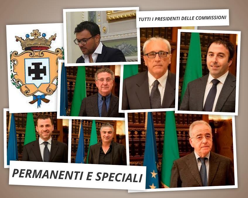presidenti commissioni provincia di Cosenza 2017