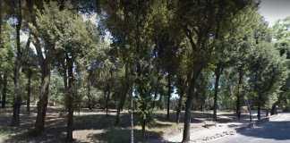 Viale George Washington Villa Borghese