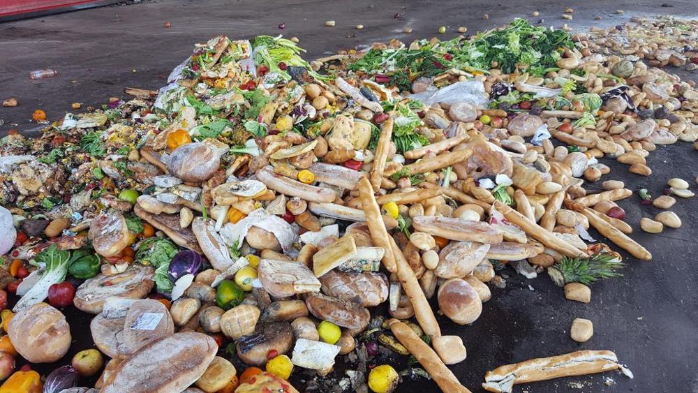 sprechi cibo rifiuti