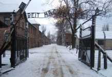 La Polonia approva norma che vieta di associare nazione a Shoah