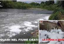 inquinamento fiume crati depuratore