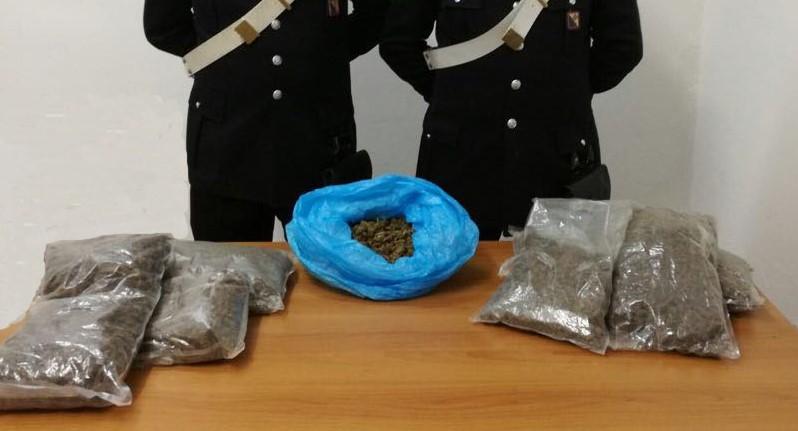 La marijuana sequestrata ad Africo Nuovo