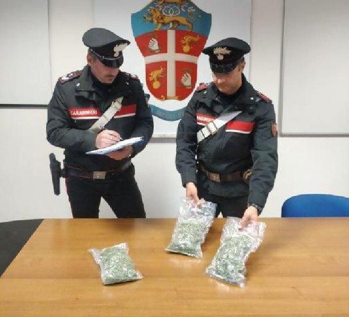 droga carabinieri marijuana