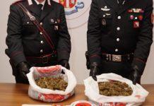 Droga: a Policoro (Matera) un arresto dei Carabinieri