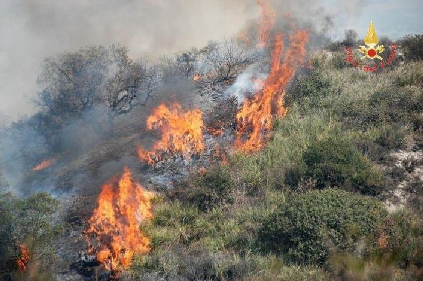 incendio sterpaglie girifalco