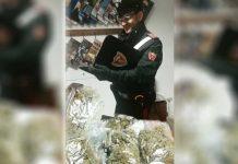 marijuana rende