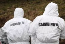 carabinieri scientifica campagna