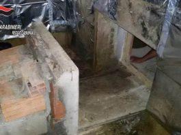 Serra per coltivare droga in bunker scoperta nel reggino