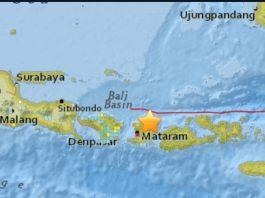 terremoto in indonesia