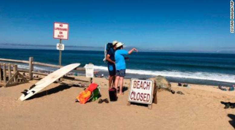 Spiaggia squalo