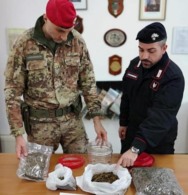 droga marijuana Careri