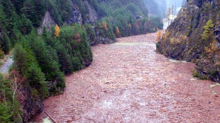Immagine della diga del Comelico con i pini abbattuti dal maltempo ad, Alleghe