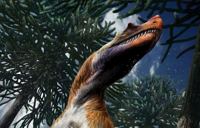Particolare della ricostruzione del Saltriovenator, era ricoperto da proto-piume filamentose