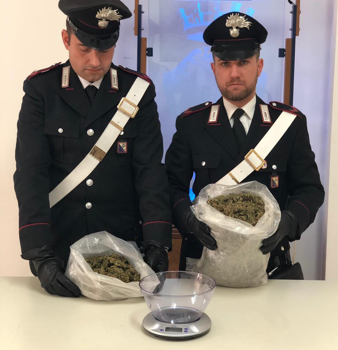 La marijuana scoperta a Siderno