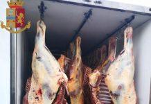 carne equina sequestrata